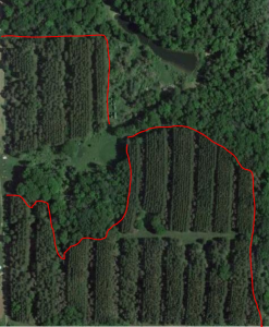 Deer Hunting Transition Areas