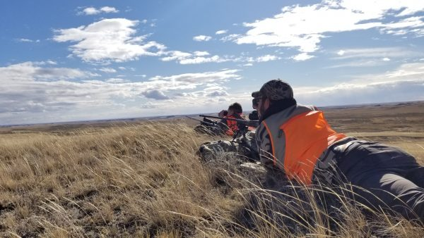 Stalking Antelope Tips